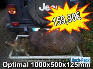1000x500x125a
